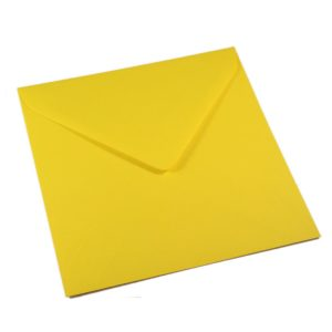 Kvadratiniai daffodil yellow