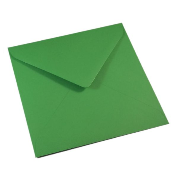 Kvadratiniai fern green